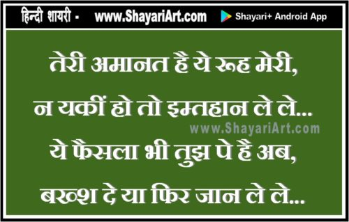 Teri Amanat - Love Hindi Shayari